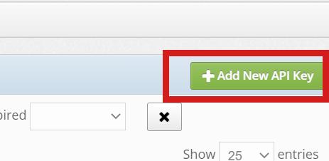 API Key Button